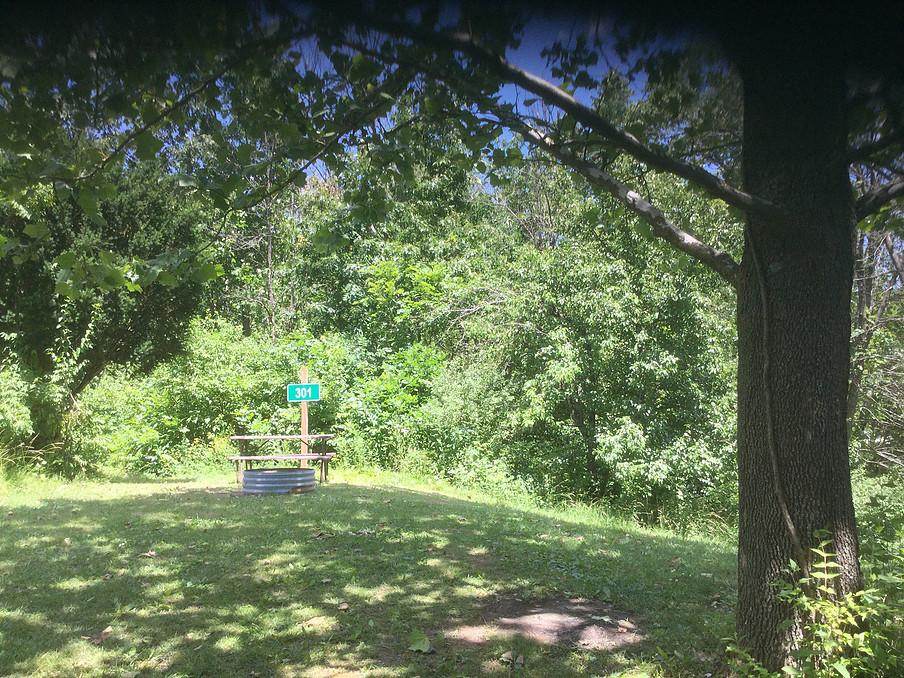 Glades Bench