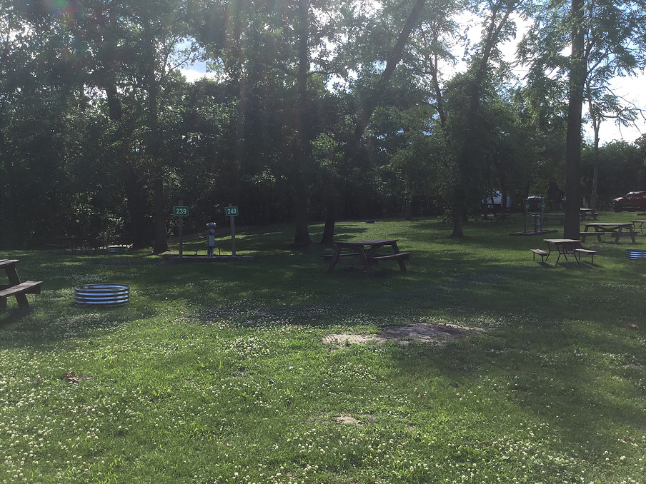 Multiple park bench in shade