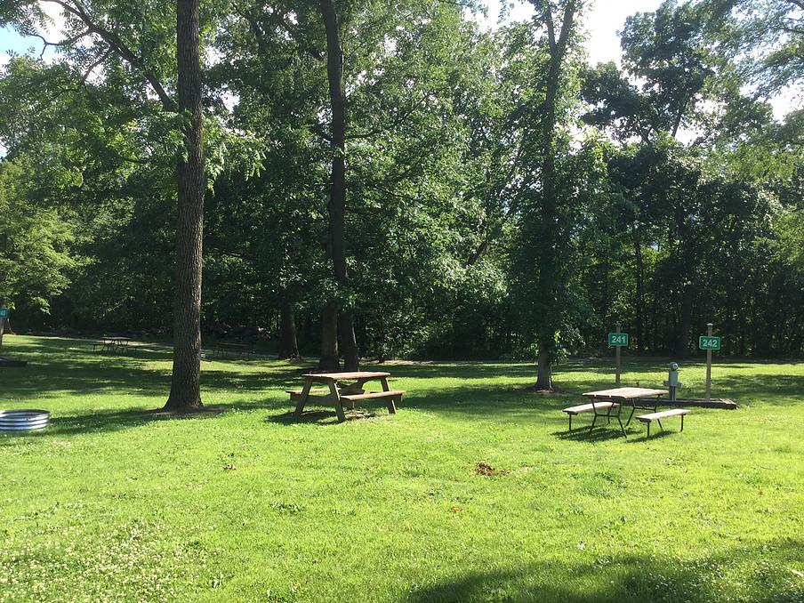 Park Bench near campsite